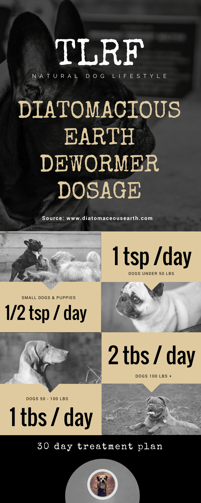 Deworming Dogs with Diatomaceous Earth Natural dewormer