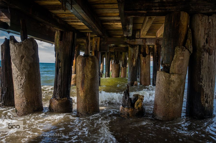 Muelle by CFLL #nature