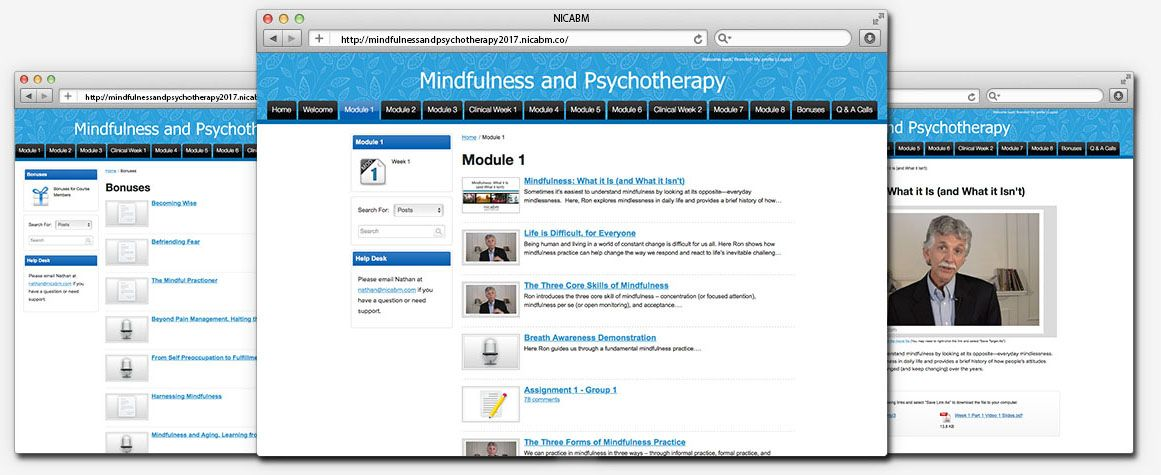 Mindfulness and Psychotherapy 2017