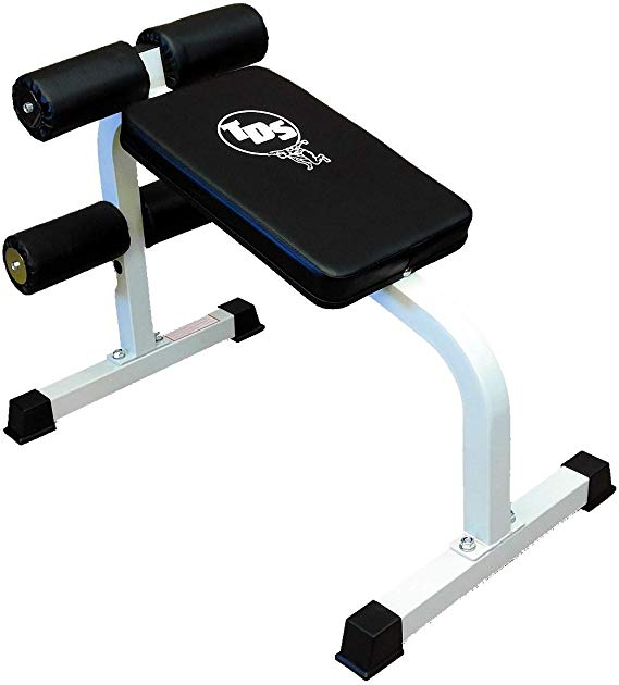 Amazon Com Tds Roman Chair Abdominal Trainers Sports Outdoors Sports Trainers Gym