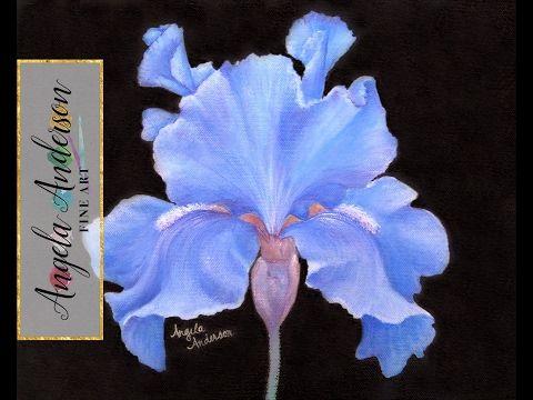 Iris Flower Acrylic Painting Instruction How To Paint Irises Angelooney Floral Youtube Iris Painting Flower Painting Flower Art