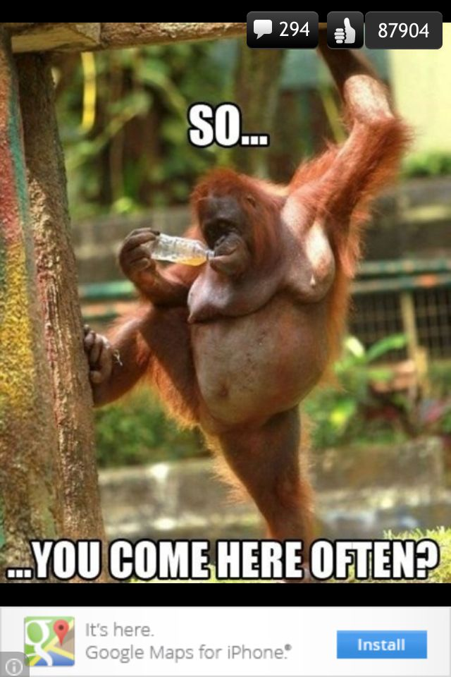 Monkey pick up line
