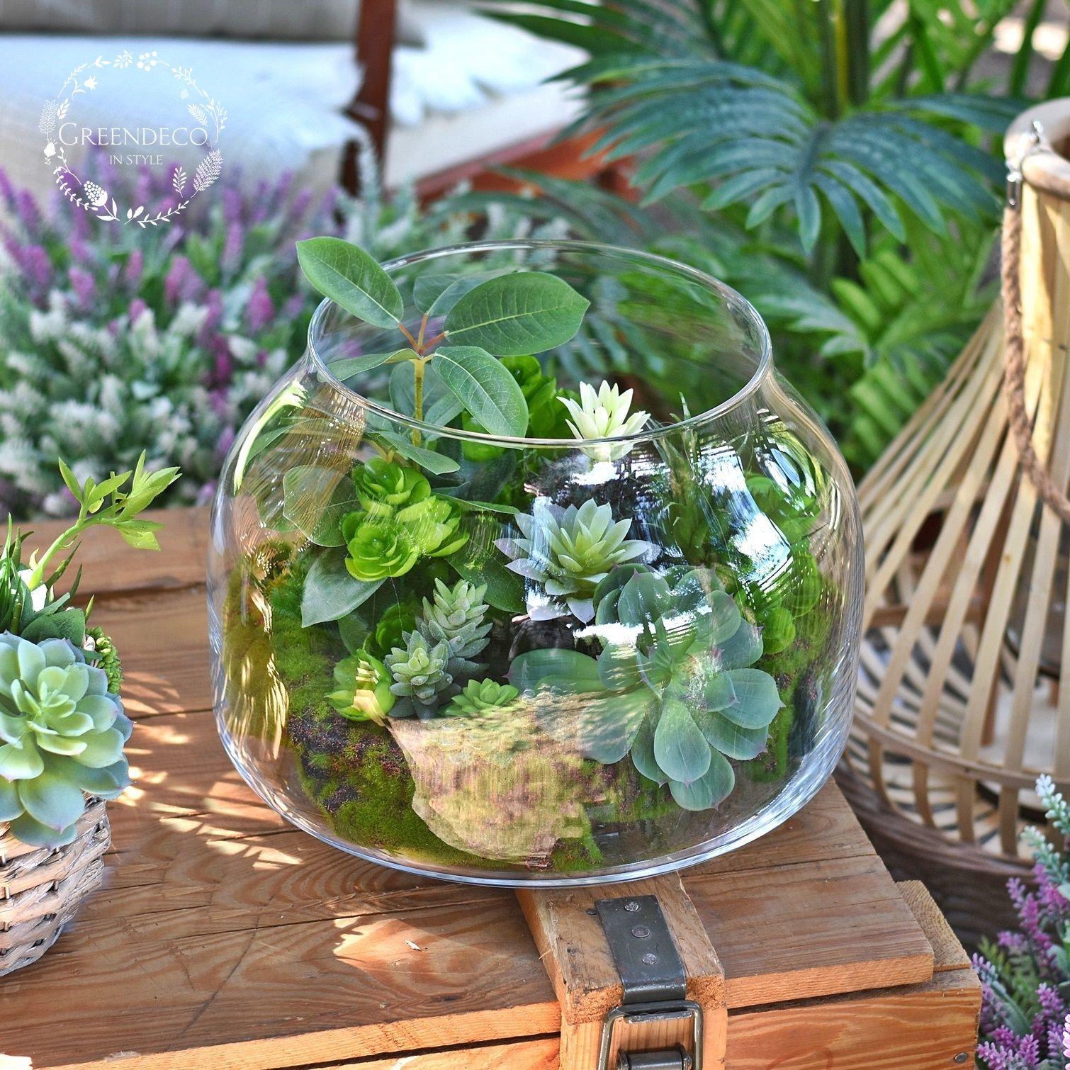 Lasy W Szkle Sukulenty W Szkle Plants Garden Decor