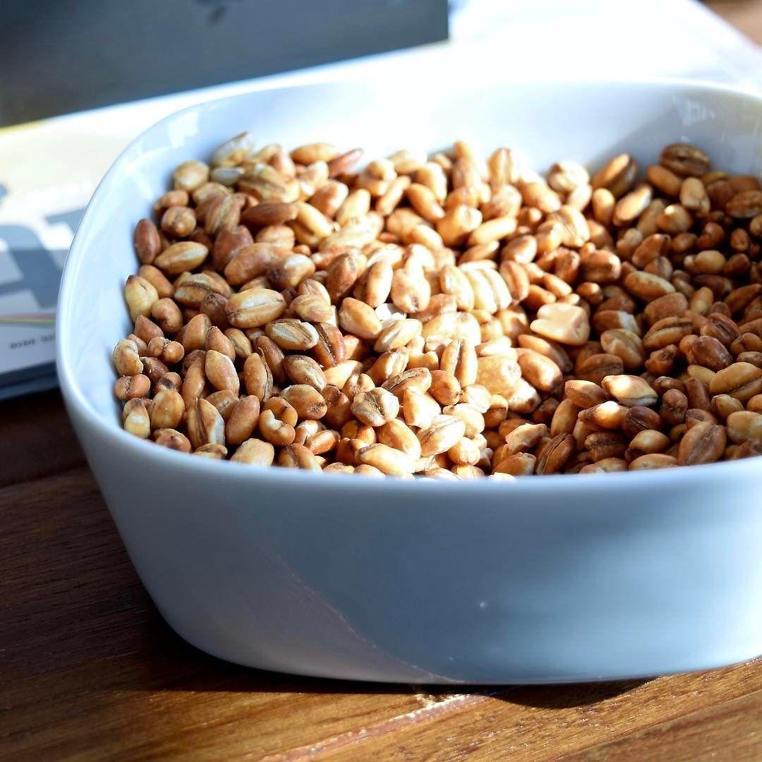 ቡና ፈልቶዋል ያገሬ ሰው   Qolo (ቆሎ) roasted grains sometimes mixed with sunflower  seeds or peanuts is a popular Ethiopian snack …   Ethiopian coffee, Food,  Dog food recipes