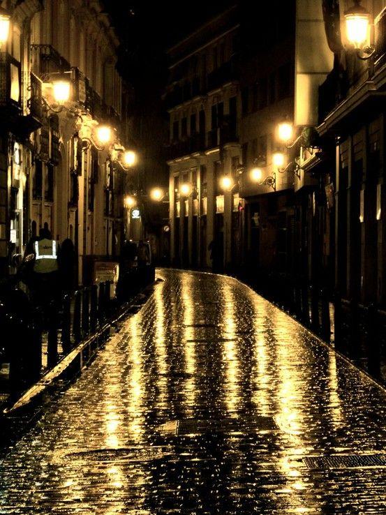 Streets Of Valencia Rainy Night Scenery Night City