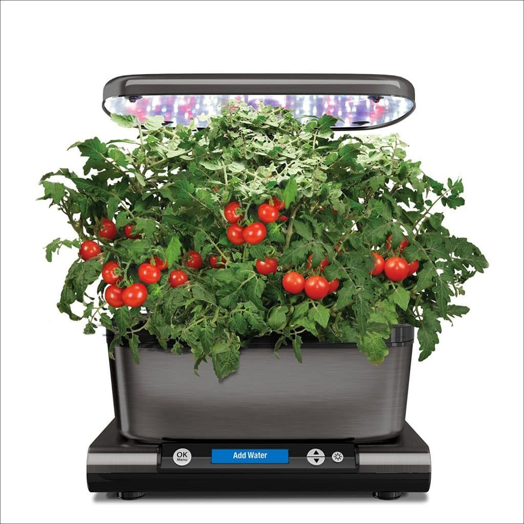 Top 10 Best Sprout LED with Gourmet Herb Seed Pod Kit in