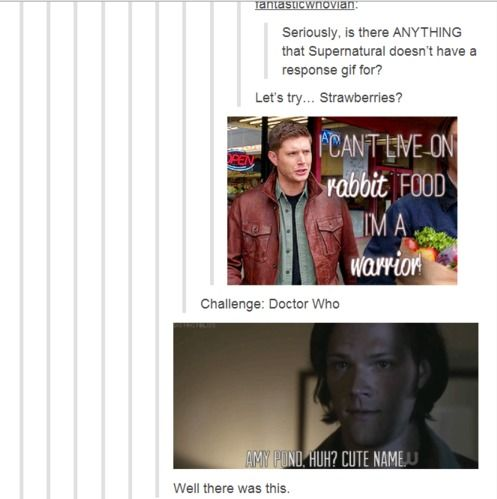 My Secret Life as a Fangirl., The Supernatural Fandom taking over tumblr one post and gif at a time