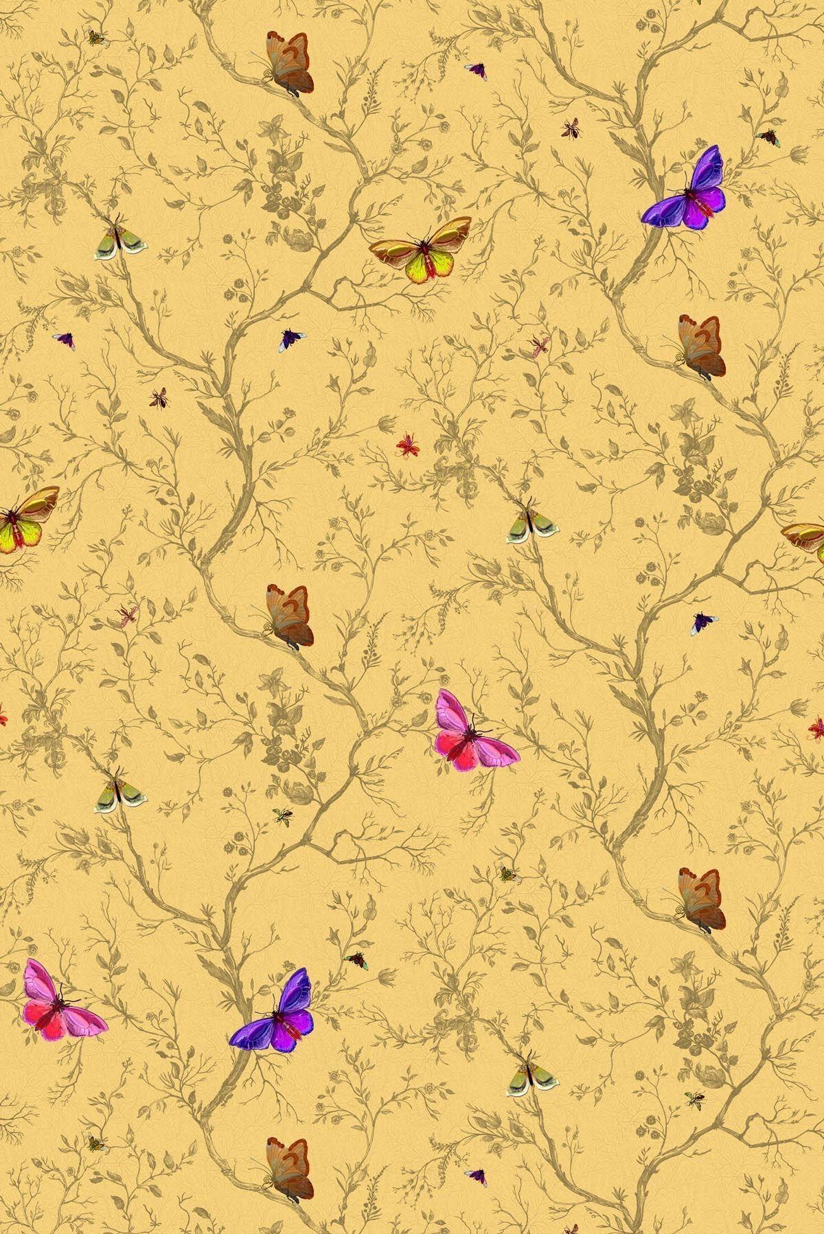 Butterflies | Butterfly, Wallpaper and Wallpaper backgrounds
