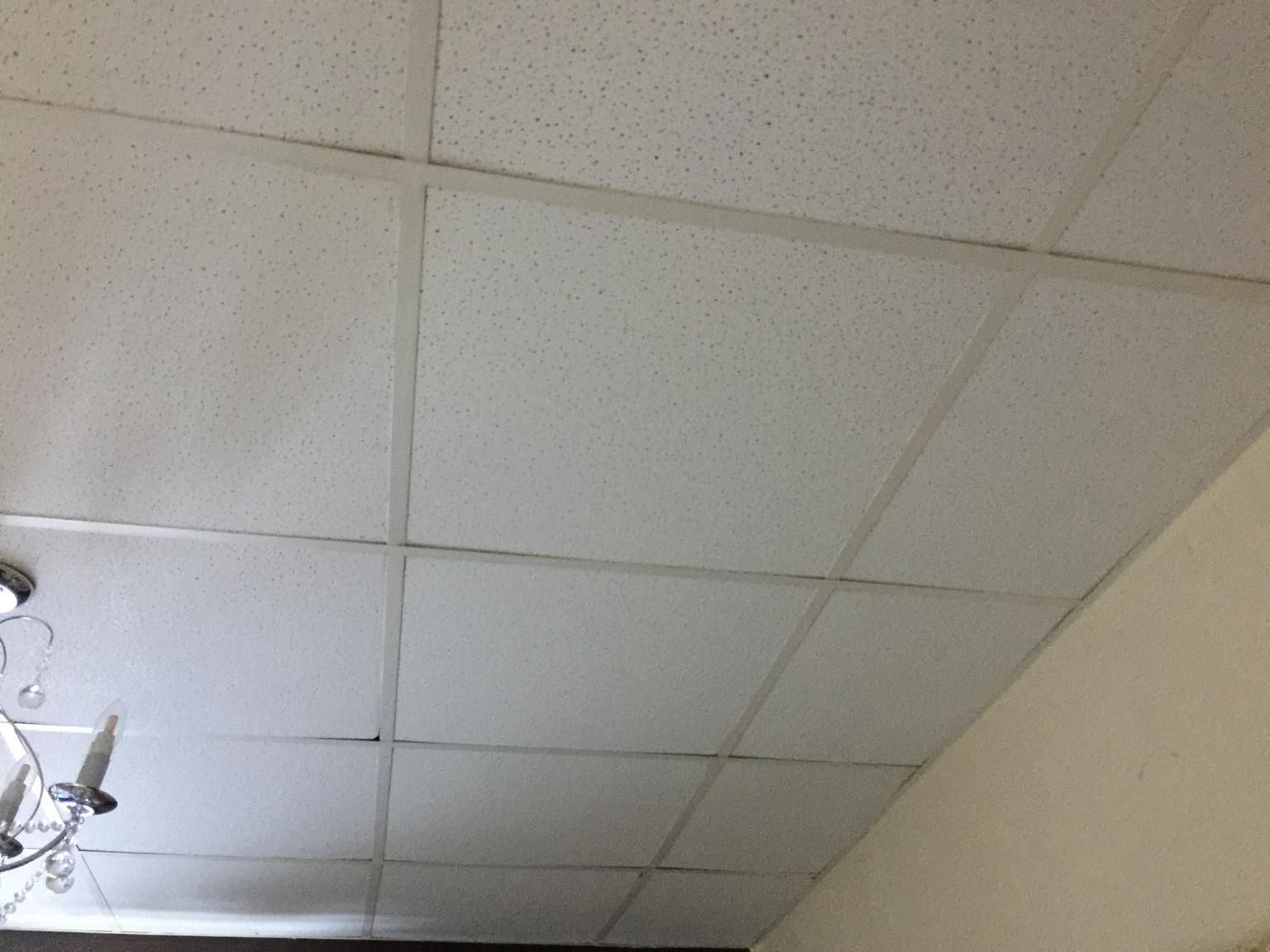 Asbestos Ceiling Tiles How To Recognize Ceiling Tiles That May