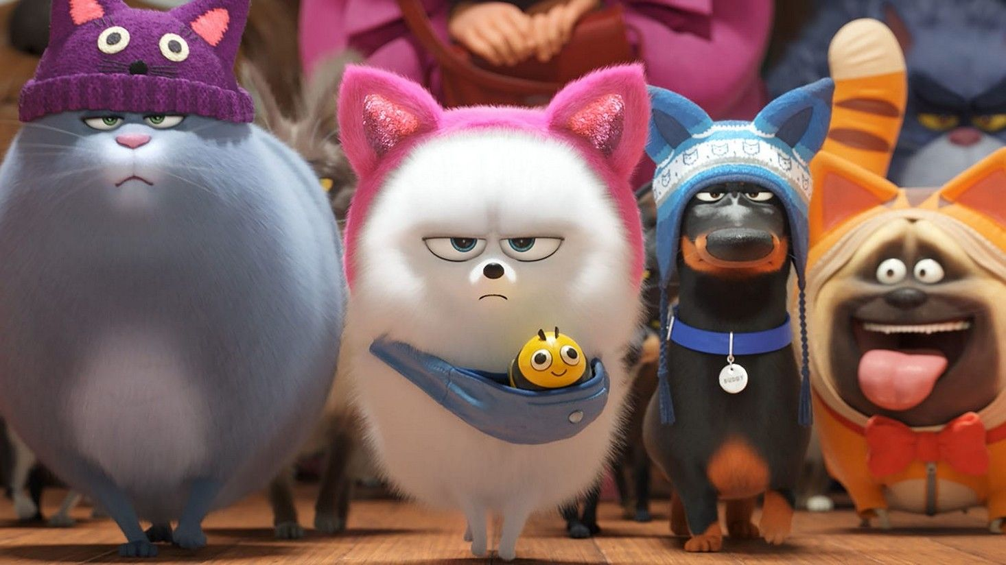 Ver Película Mascotas 2 Audio Latino Online Secret Life Of Pets Pets Secret Life