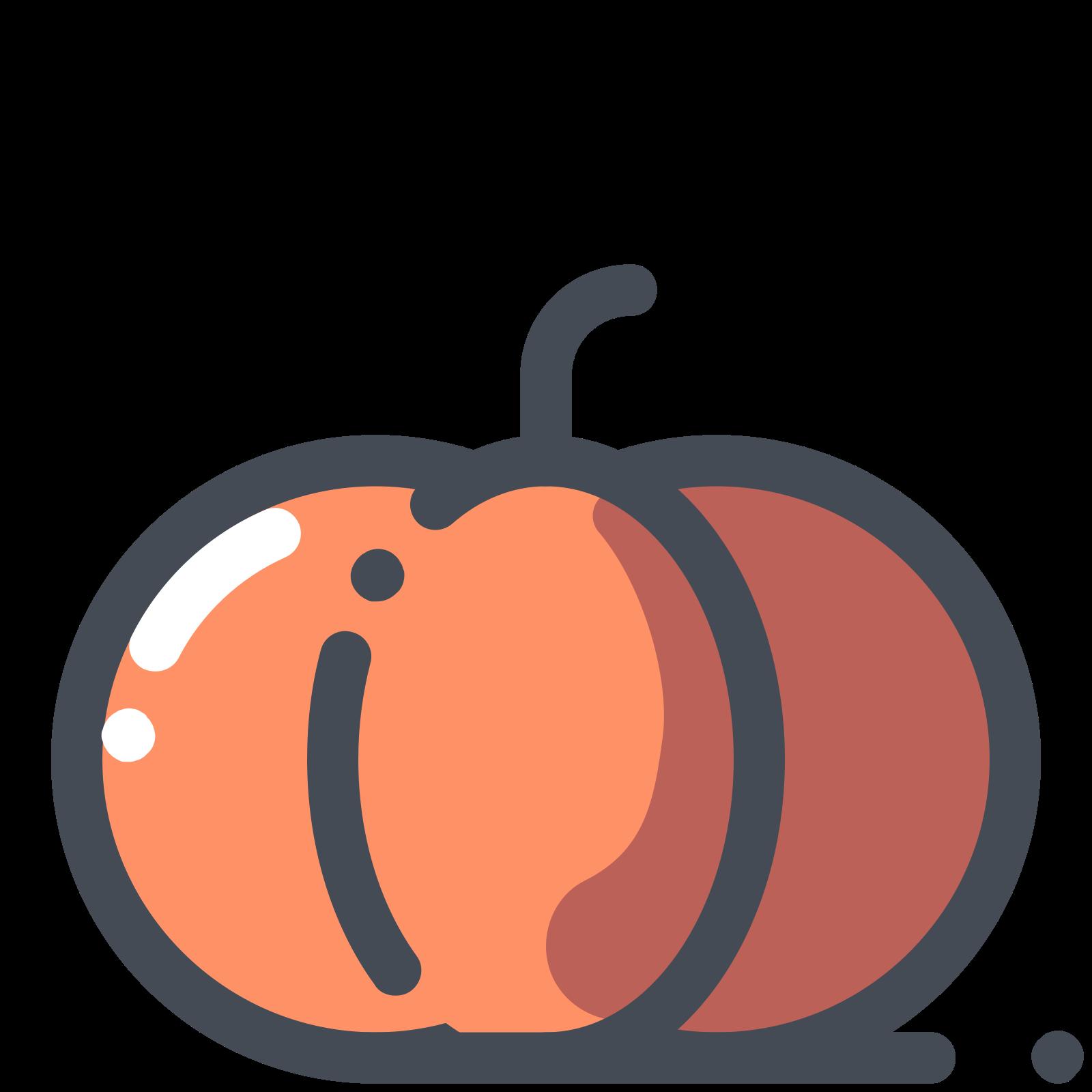 Pumpkin Vegetable Icon Halloween Icons Graphicdesign Illustration Pumpkin Illustration Halloween Icons App Icon