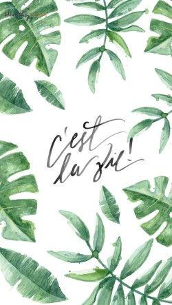 Cest La Vie Leaves Iphone Wallpaper