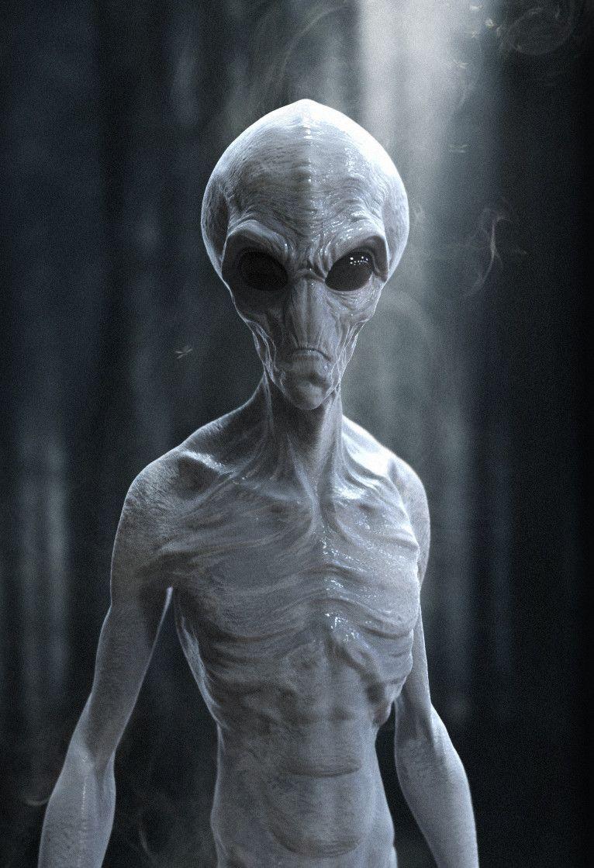 Artstation Grey Alien 3d Model Jack Nesbit With Images