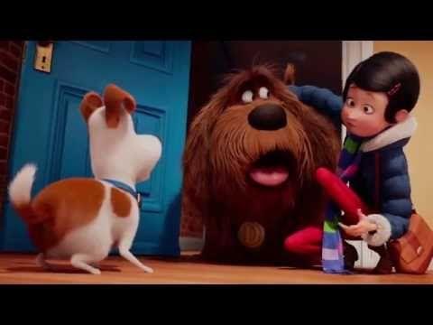 Novos Trailers E Cartazes Do Filme Pets A Vida Secreta Dos