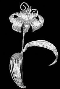 Handmade Kursy Wzory Tutoriale Ozdoby Z Folii Aluminiowej Dandelion Plants Flowers