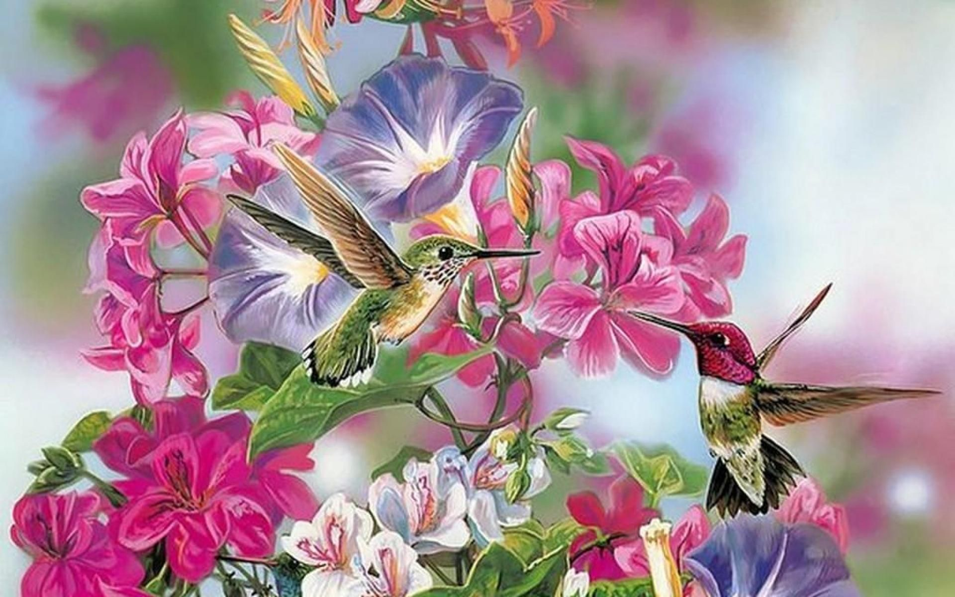 Hummingbirds Garden Flower Painting Hd Wallpaperg 19201200