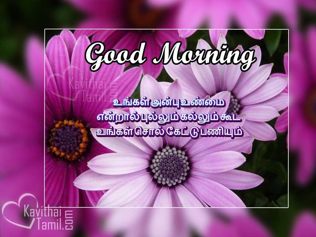 Kaalai vanakam greetings and images with good thoughts tamil kaalai vanakam greetings and images with good thoughts tamil quotes for wishing friends kristyandbryce Images