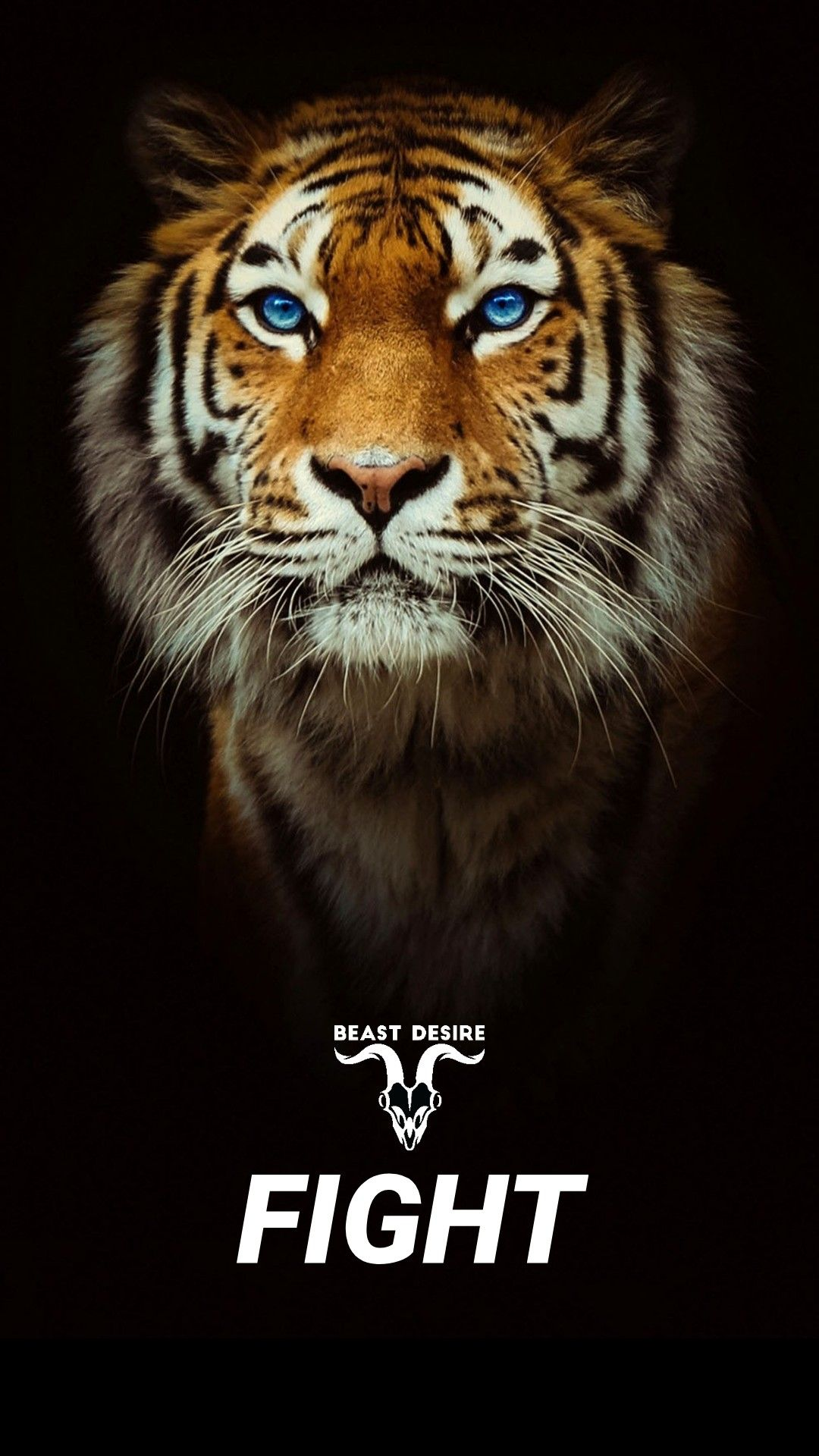 Pin On Tigers