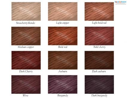 Red Hair Color Chart Hair Hair Red Hair Color Dyed Hair