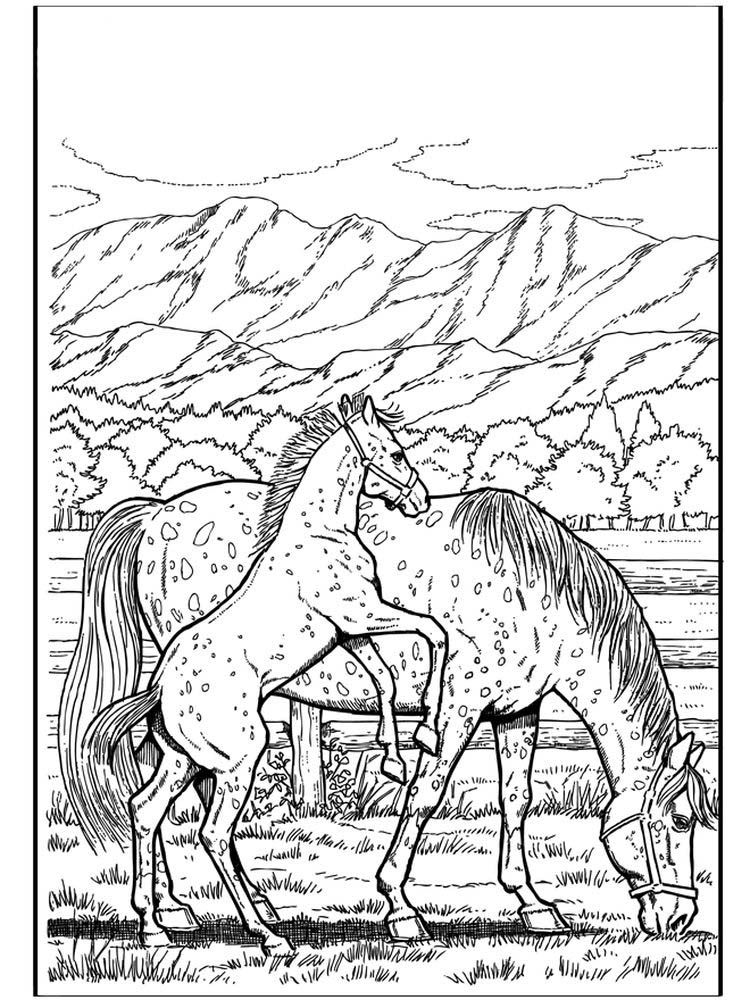 Wild Horse Coloring Pages Horses Are Known As Runner Animals So They Are Often Used As Fast Transportation In The Past This Animal Has Long Been One Of The E