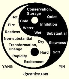 an analysis of the philosophy of yin yang Master gu, chinese daoist master, & i explore the definition, meaning & philosophy of the yin and yang symbol + how it can help us find balance in our.