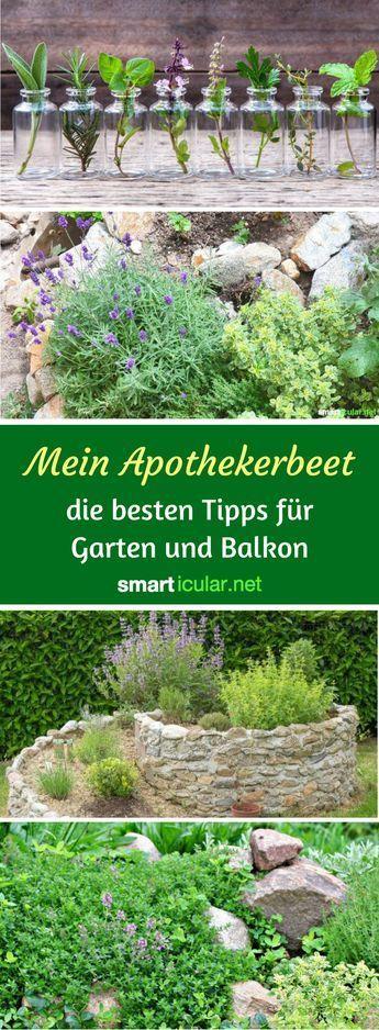 Naturlich Gesund Mit Dem Apotheker Beet Katja Healt Garden Types