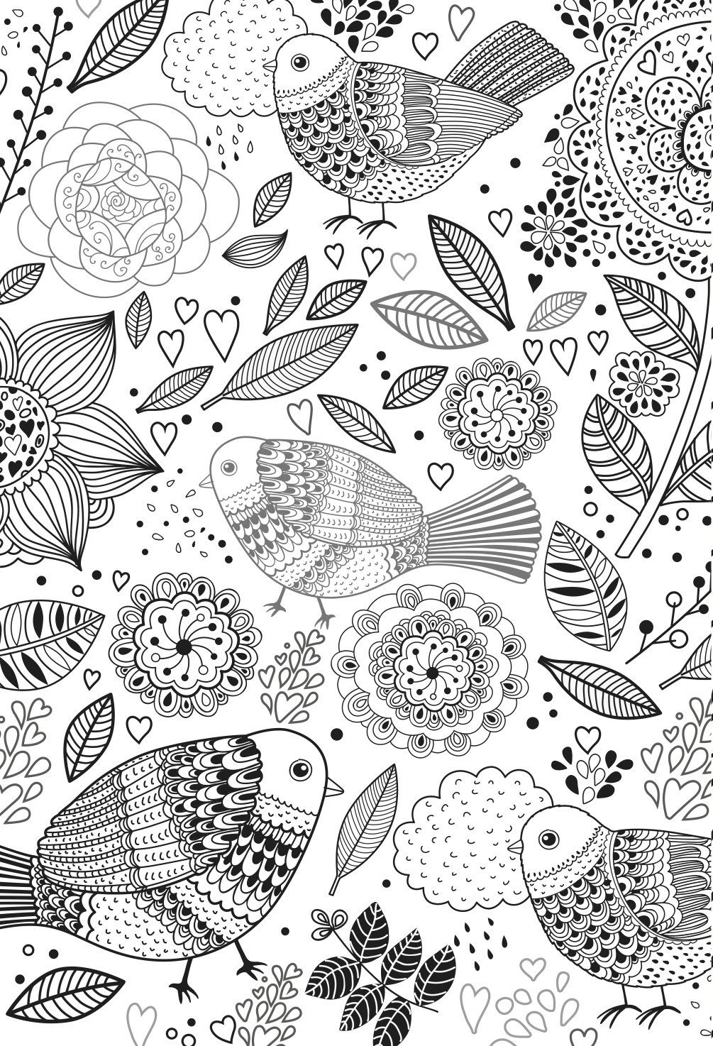 Amazon Fr The One And Only Colouring Book For Adults Livres Bird Coloring Pages Colouring Pages Coloring Books