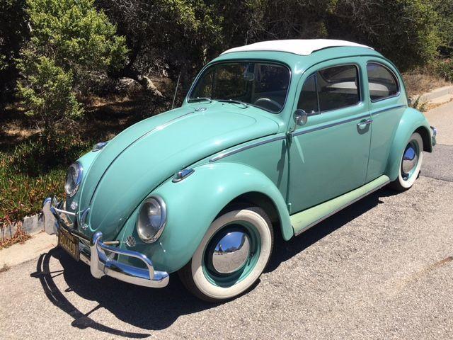 Vw For Sale >> Oldbug Com Vintage Vw S For Sale Warren Pinterest Beetles