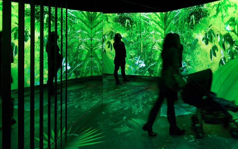 Moment Factory Turns Nature Installation Into Vibrant Multi Sensory Arena Projection