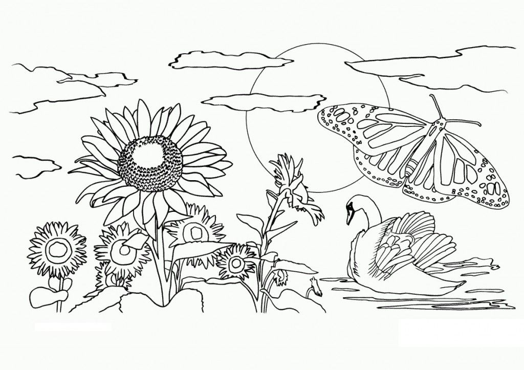 Free Printable Nature Coloring Pages For Kids Coloring Pages