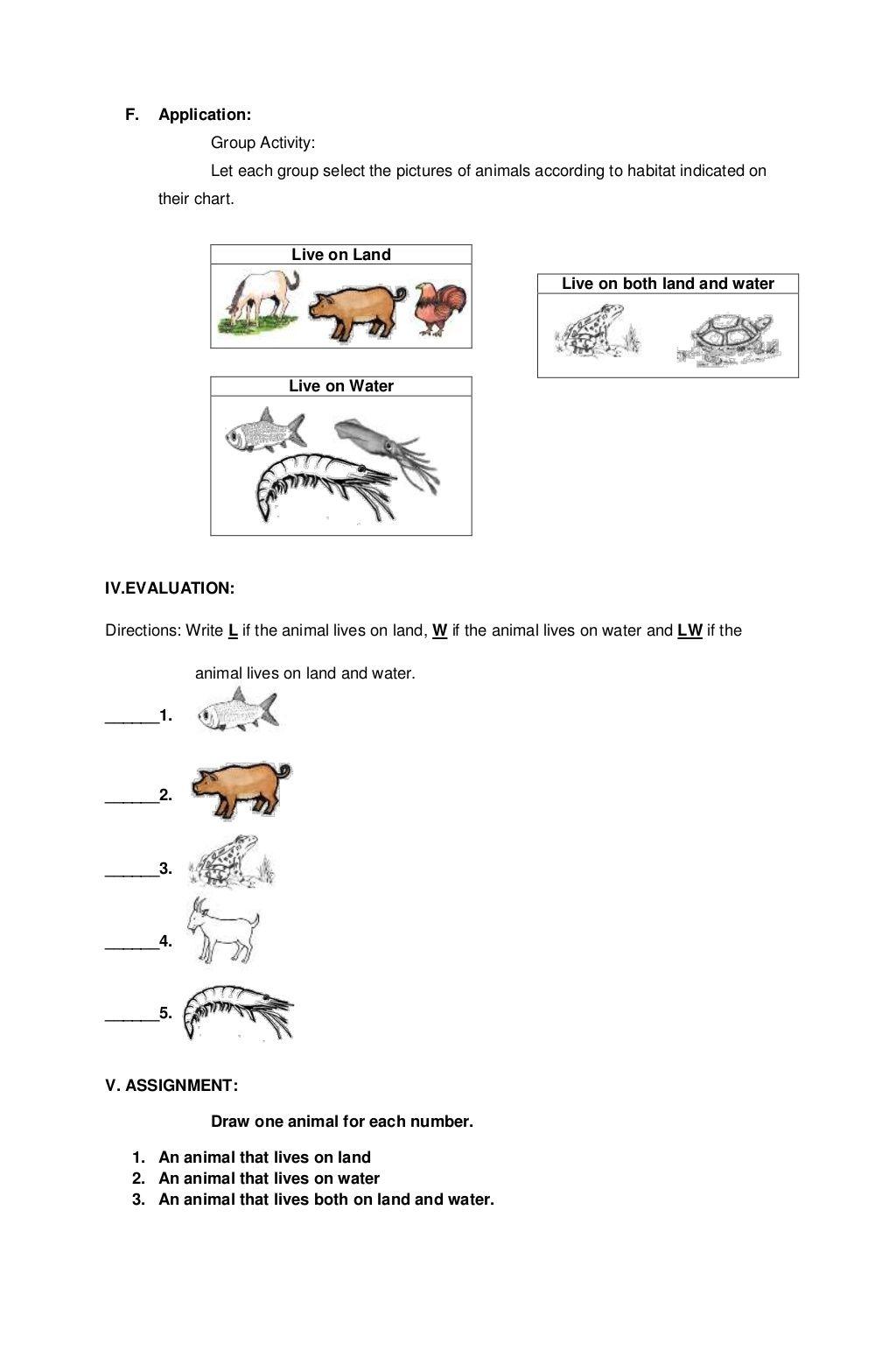 Lesson Plan Science Kinder