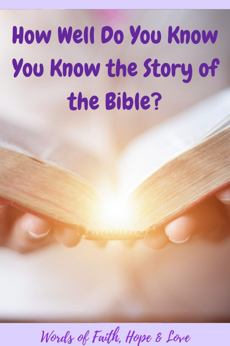 Bible 102 the story of the bible words of faith hope