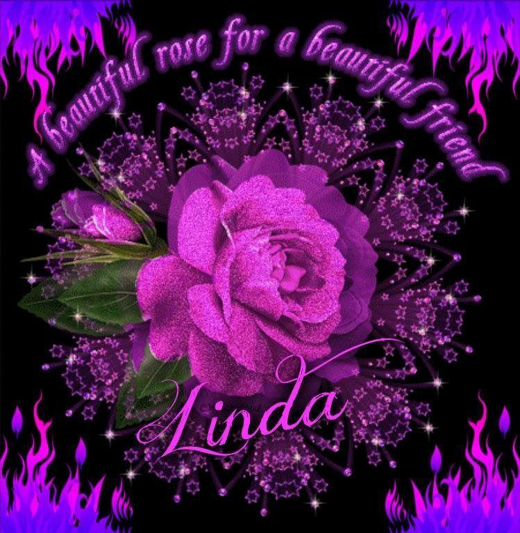 Вечерний приветик, картинки красивые цветы розы анимация для ватсап
