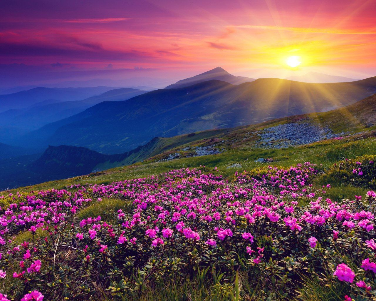 Красивые фотографии природы | Горный пейзаж, Пейзажи ...