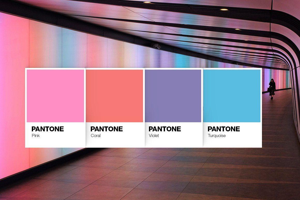 Pantone Color Cards Mockup Pantone Color Color Card Retro Color Palette