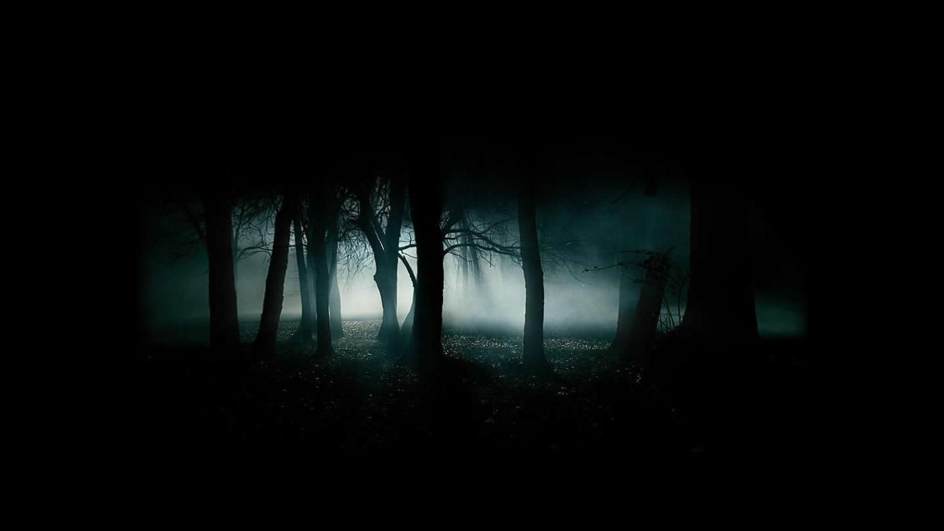 575 Wallpapers All 1080p No Watermarks Post Scary Backgrounds Night Forest Misty Forest