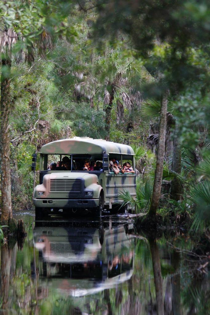 Babcock Wilderness Adventures Tour Florida Travel Florida