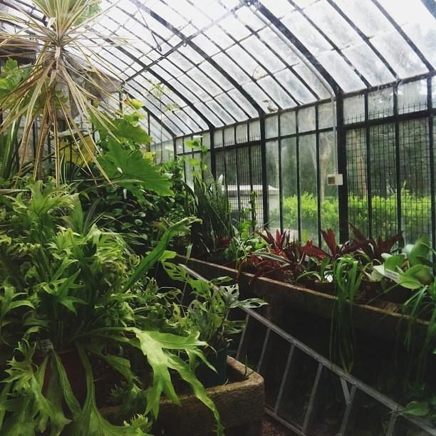 Buenos aires botanical garden | Greenhouse & Conservatory ...