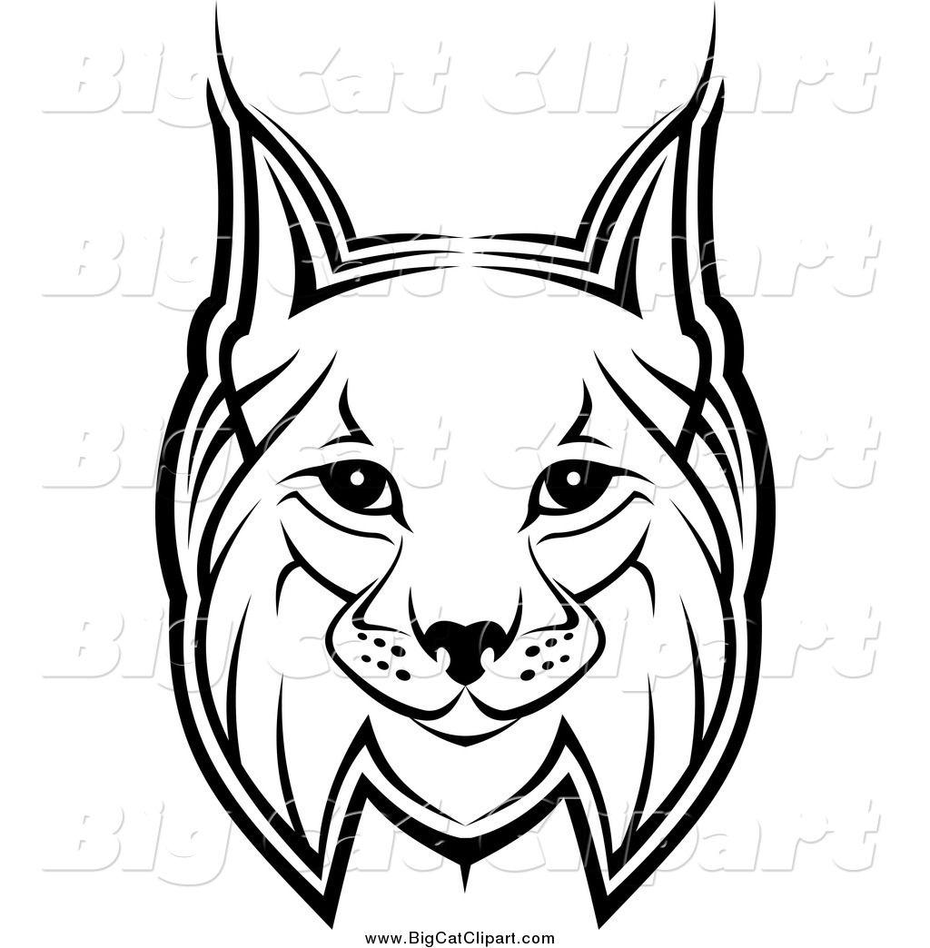 Cool Bobcat Drawing