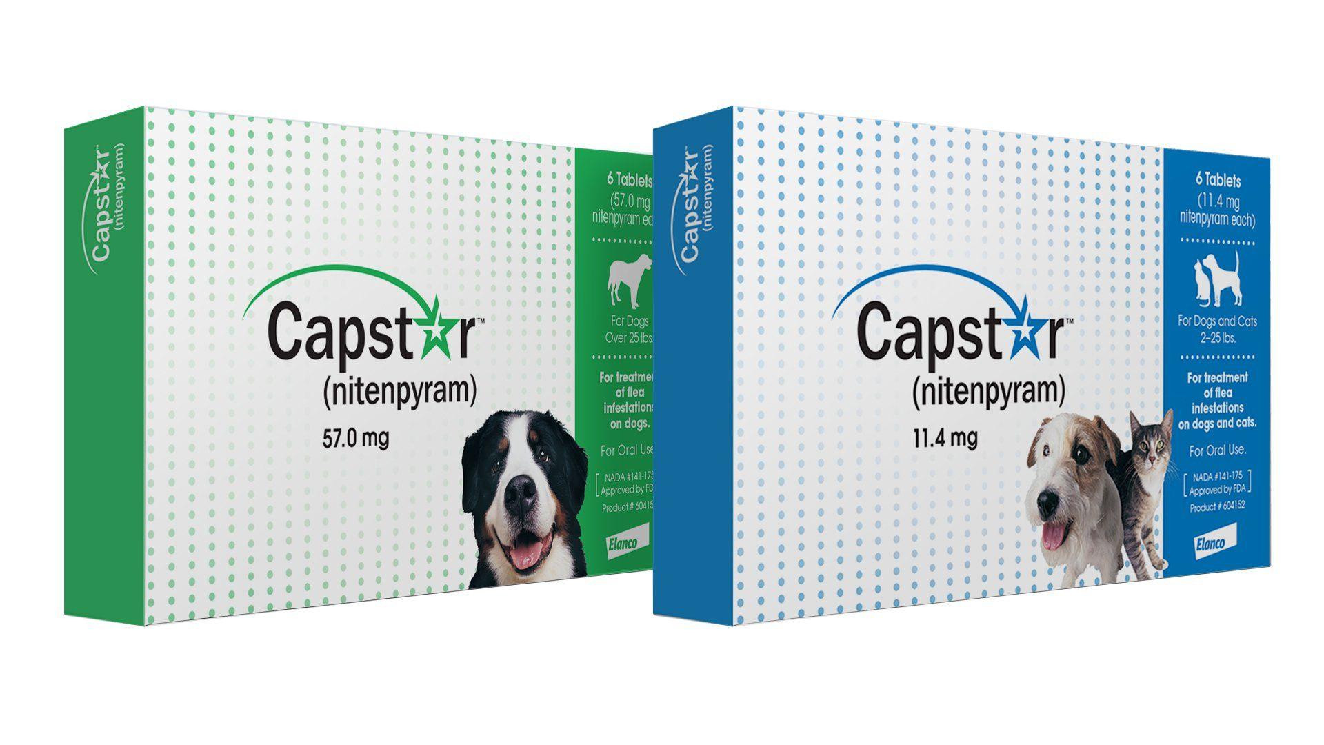Novartis Capstar Flea Tablets For Dogs And Cats Flea Capstar Novartis Cats With Images Flea Treatment Fleas Dog Cat