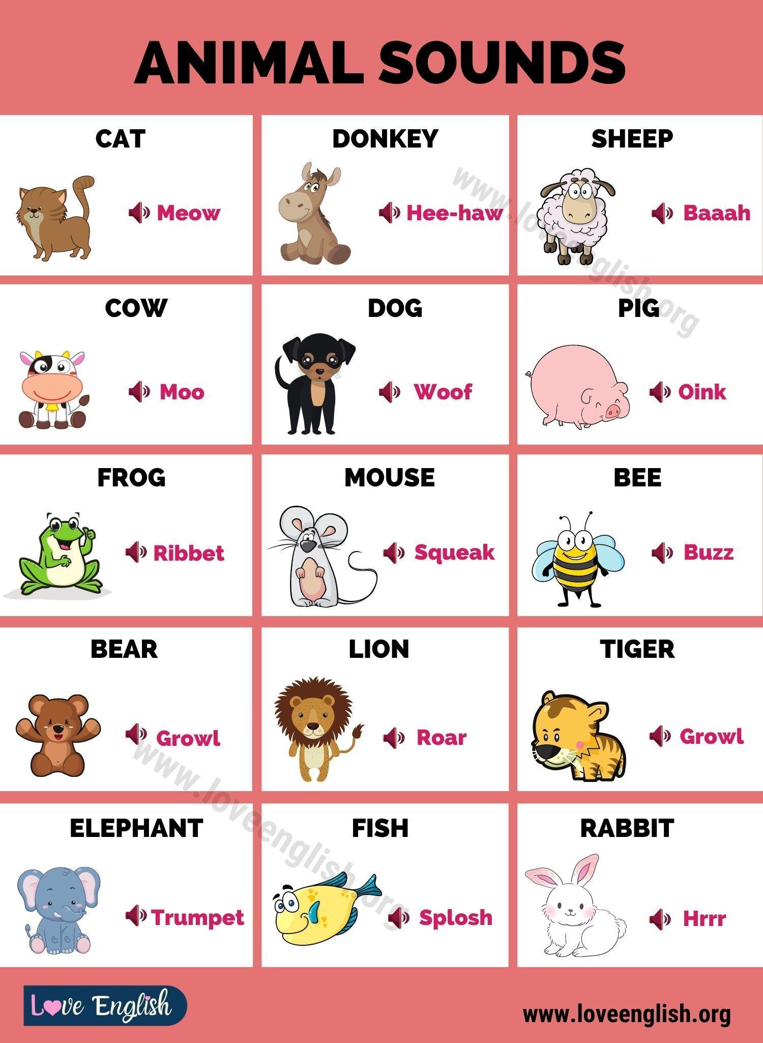 Animal Sounds Interesting List Of Animal Sounds For Kids