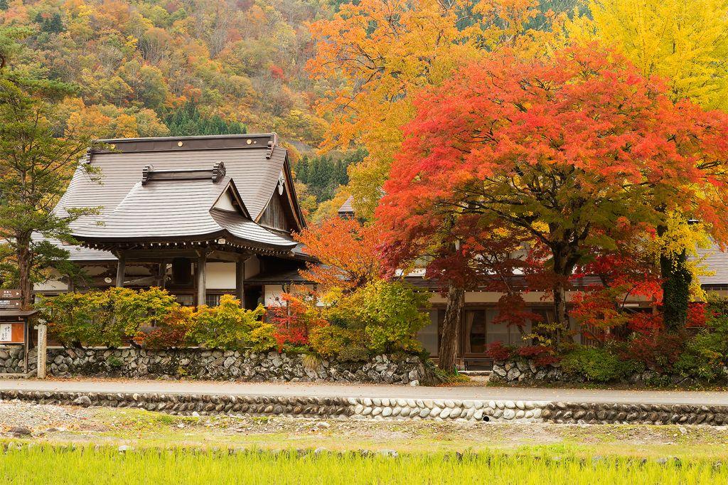 秋色の白川郷の画像(写真)