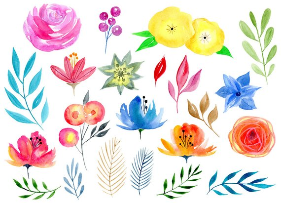 Watercolor Floral Clipart 56 Bright Branches Flowers Leaves