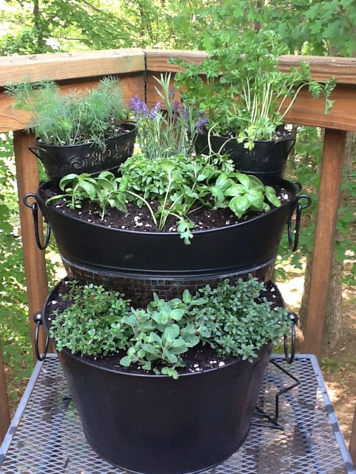 Tiered Herb Garden I Saw This Idea On Pinterest And Had To Do It Myself I Can T Wait To See Wh Diy Self Watering Planter Vegetable Garden Tips Fruit Plants