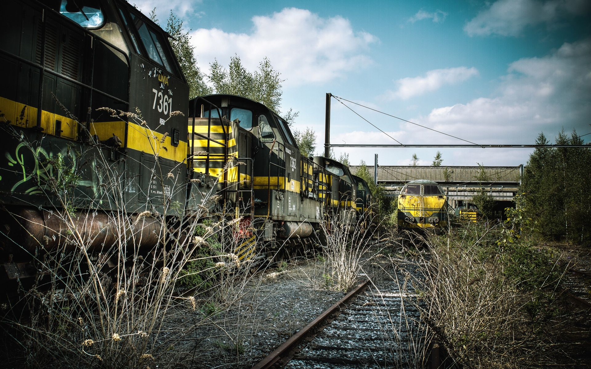 Abandoned Train Station Overgrown With Weeds Wallpaper 1920x1200 Resolution Wallpaper Download Train Wallpaper Abandoned Train Abandoned Train Station