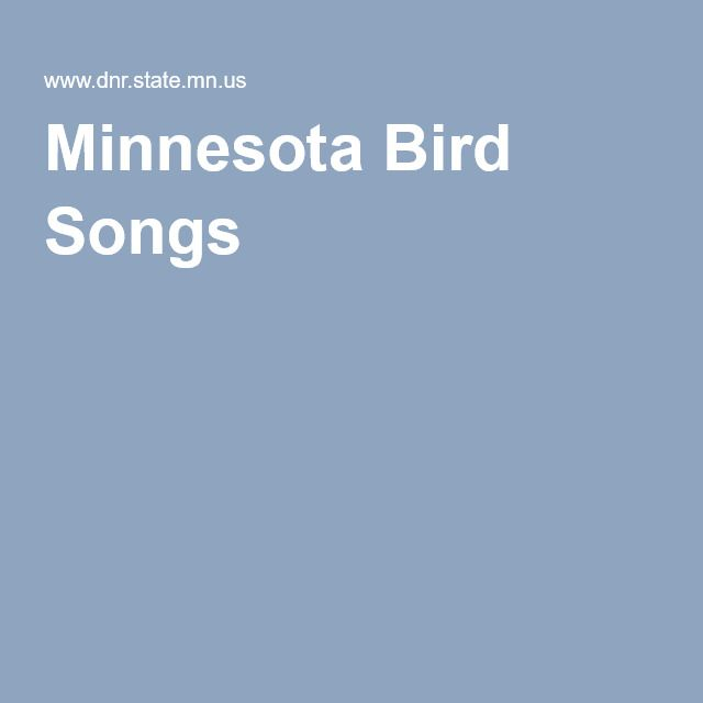 Minnesota Bird Songs Minnesota Birds Song Bird Songs