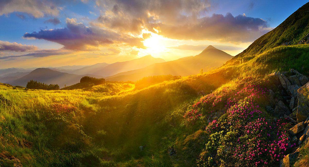 Закат в цветущих горах | Пейзажи, Закаты, Картинки