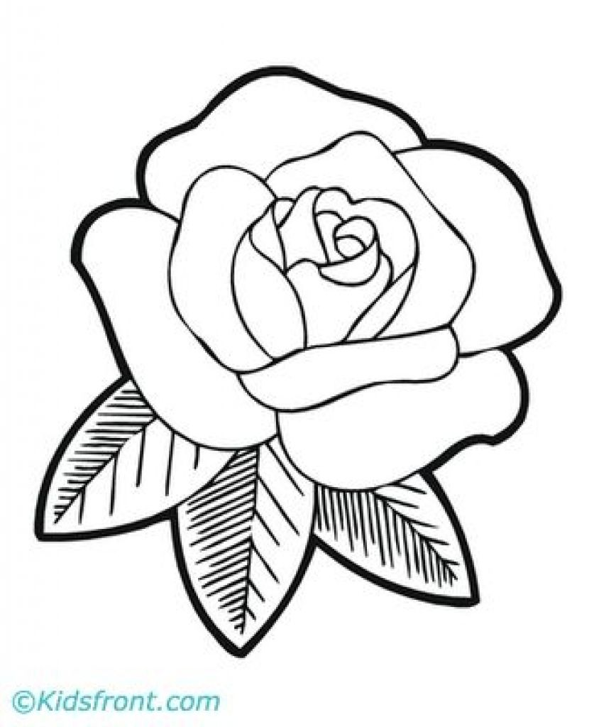 Easy Roses To Draw Cartoon Rose Drawing Cartoon Roses Draw How To Draw An Easy Rose Rose Drawing Simple Easy Flower Drawings Flower Drawing