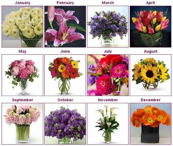 which flowers are in season boquet september and flower