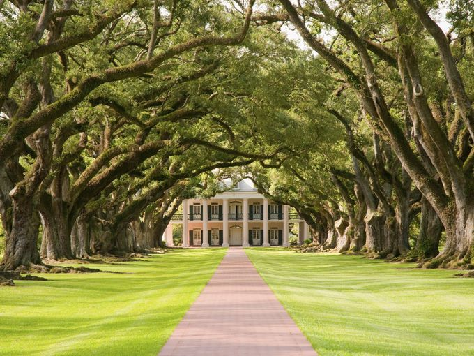 10 Best: Historic Southern plantations - Visitors to Oak Alley Plantation can see where the name comes from by walking the long, breathtaking path created by a double row of live oa...